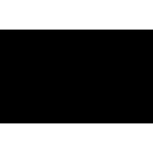 logo-bringmeister